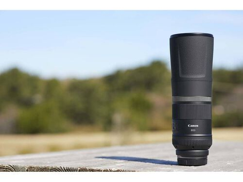 OBJECTIVA CANON RF 800 MM F:11 IS STM image number 5