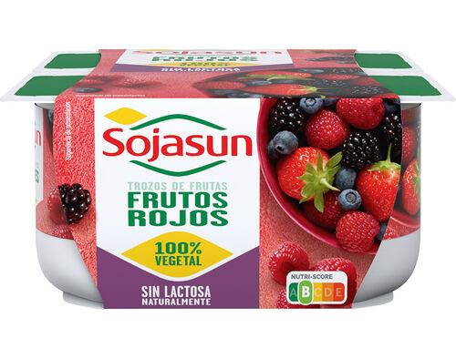 SOJAGURTE SOJASUN FRUTOS SILVESTRES 4X100G image number 0